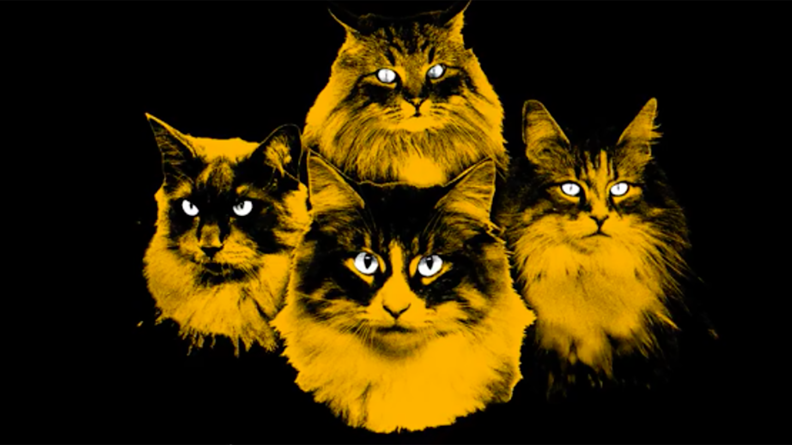 Hear Meow Mix's New Metal Jingle by Fictional Band Endless Hiss