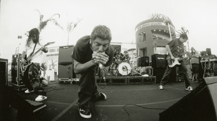 8 Things You Didnt Know About Deftones Around The Fur Revolver
