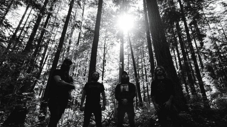Wormwitch black and white , Avrinder Dhillon