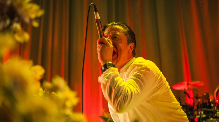 Mike Patton Getty