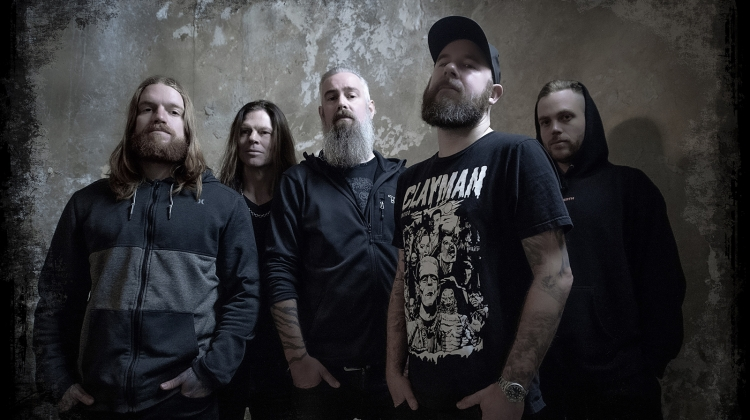 in flames 2020