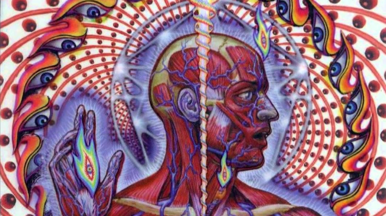 tool lateralus art
