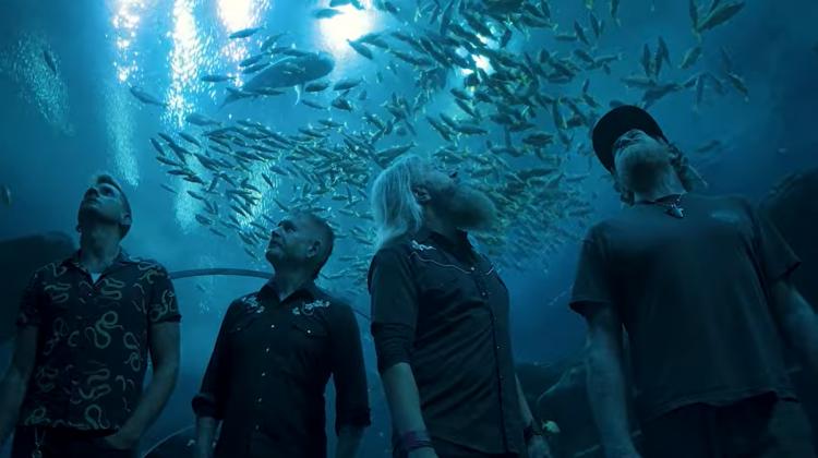 Mastodon Georgia Aquarium preview stream