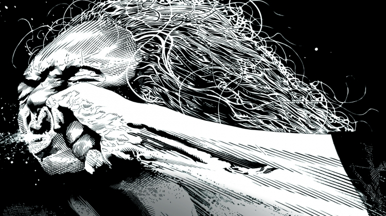 pantera vulgar cover BRADSTREET, Tim Bradstreet