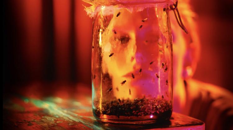 jar of flies outtake 2, Rocky Schenck