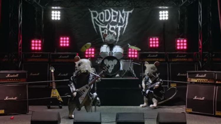 tomcat death metal still