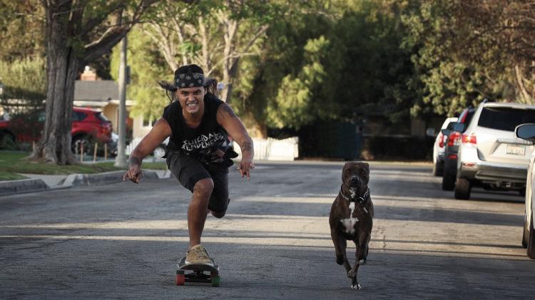 david-eric-hendrix-skate-dog.jpg, Eric Hendrikx