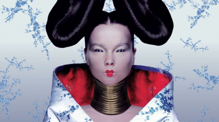 bjork homogenic cover