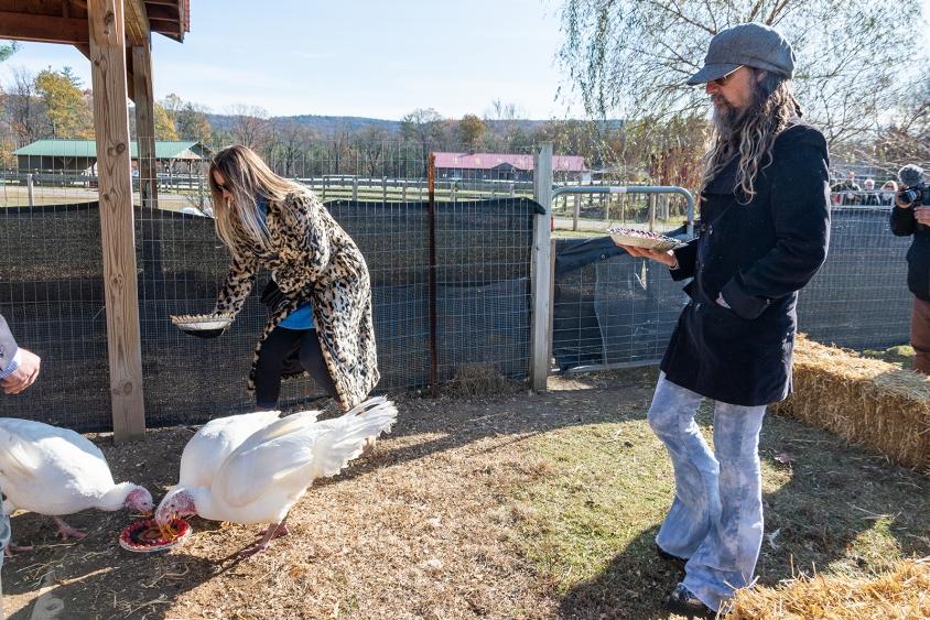 7_feeding_turkeys.jpg, Melissa Cacioppo