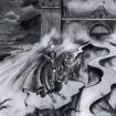 satyricon dark medieval times crop