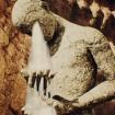 mastodon tear drinker video still