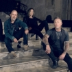 metallica PRESS 2017 herring herring
