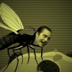 mike Patton fly vid still