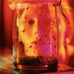 jar of flies outtake 2, Rocky Schenck