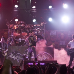 avenged sevenfold vinnie paul