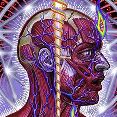 tool lateralus crop